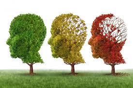 Già thì phải quên-Alzheimer ở người cao tuổi